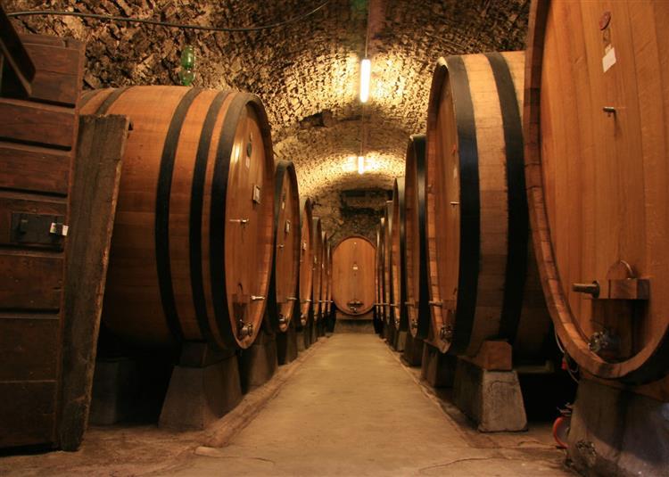 As 6 melhores wine tours do mundo