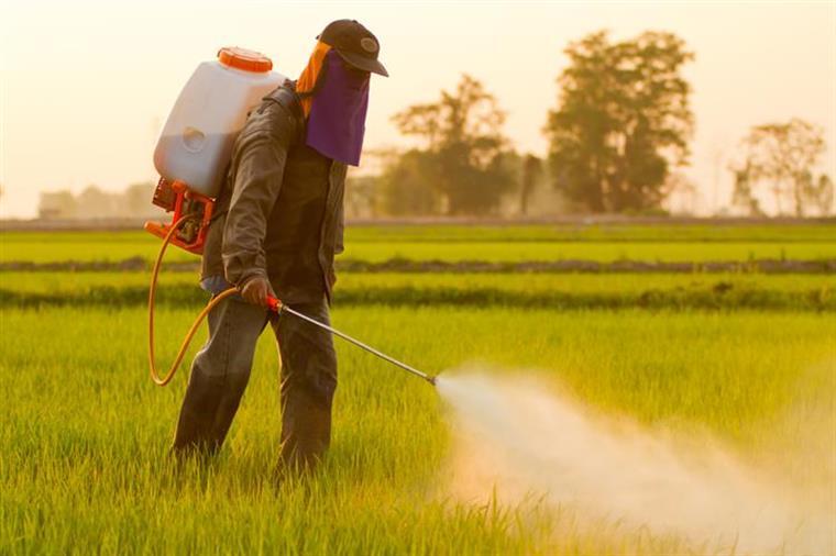 Bayer oferece 62 mil milhões de dólares pela Monsanto
