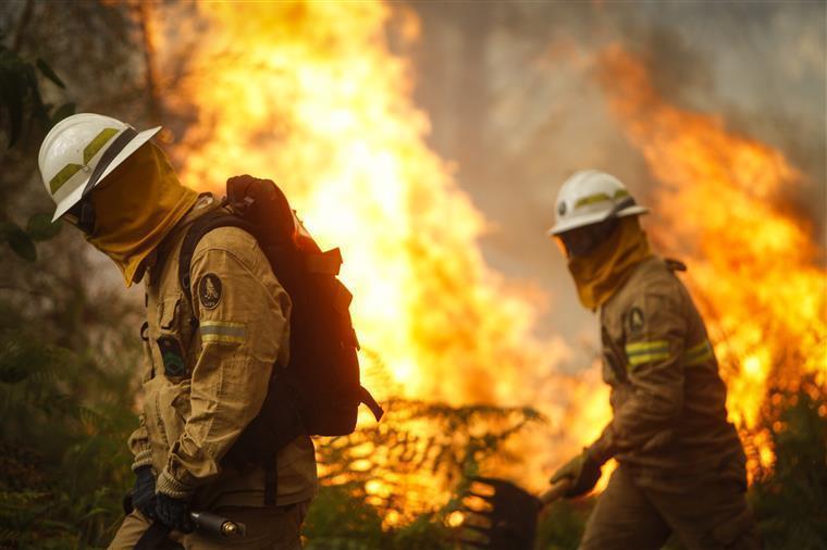Incêndio. Quase duas centenas de bombeiros combatem chamas em Águeda